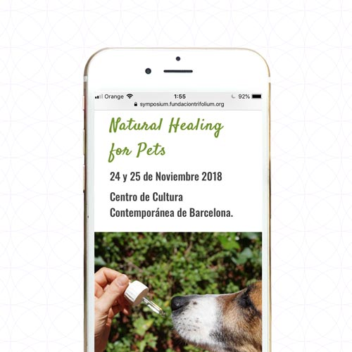 Marketing y Diseño Páginas web para veterinarios conscientes